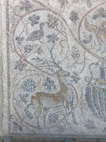I love a beautiful tile mosaic. 'The Bird Mosaic' discovered in Bet Guvrin (Eleutheropolis) in 1921, believed to date back to the Byzantine (6th century CE).